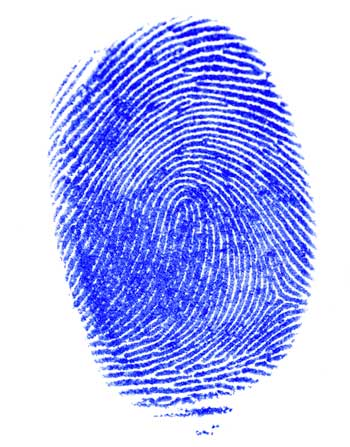 Does each of the company\'s Security Officers have a valid Oregon ...